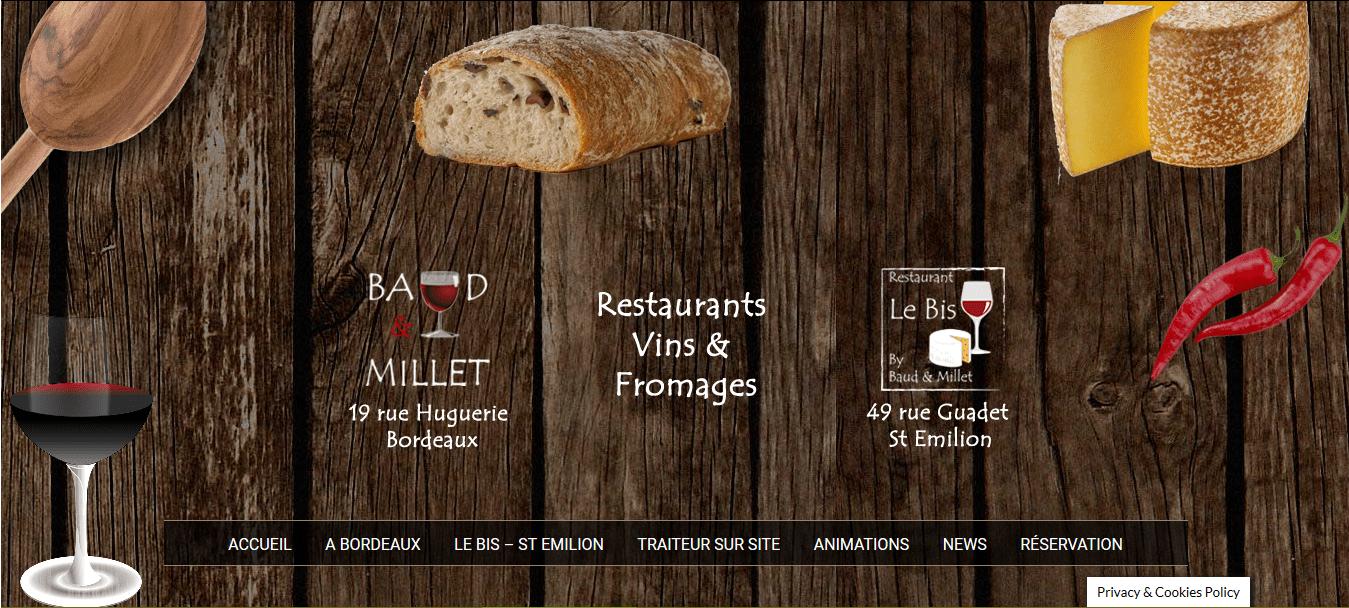 baud_millet-realisation-formateur-wordpress-bordeaux